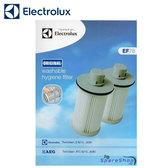 Electrolux 伊萊克斯 EF78 HEPA10級可水洗濾網(Twinclean專用)1組2個