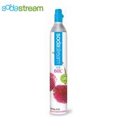 【熱銷萬台】Sodastream 二氧化碳盒裝鋼瓶 氣泡水機鋼瓶 425g 加碼贈糖漿2瓶