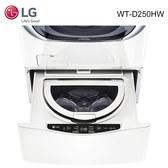 LG 樂金 WT-D250HV/WT-D250HW 洗衣機 2.5kg 星辰銀/冰磁白